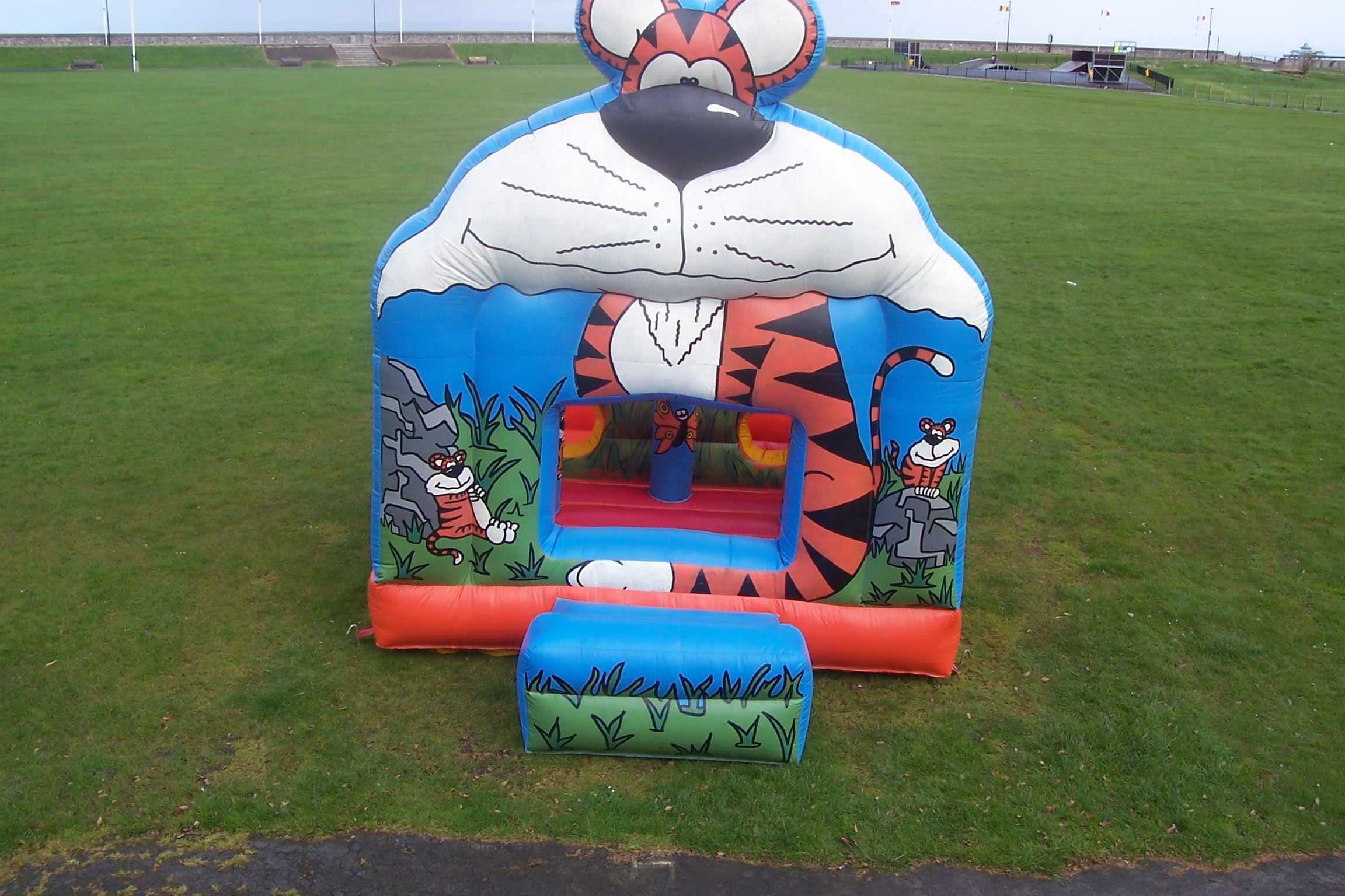 Our Tiger Ball Pit is a smaller bouncy castle similar to our Jungle Activity. With obstacles and tunnels to climb through and a ball pit to play in, the younger ones are sure to enjoy bouncing for hours! Suitable for children up to 7 years.